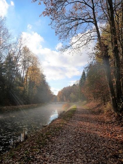 Baum, Ludwigskanal, Herbst, Landschaft, Fotografie