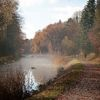 Herbst, Landschaft, Nebel, Ludwigskanal
