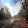 Landschaft, Baum, Ludwigskanal, Herbst