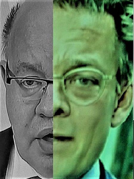 Portrait, Menschen, Gesicht, Mann, Kopf, Umfrage