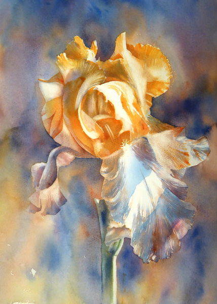 Blumen, Zwiebeln, Iris, Schwertlilie, Aquarellmalerei, Aquarell
