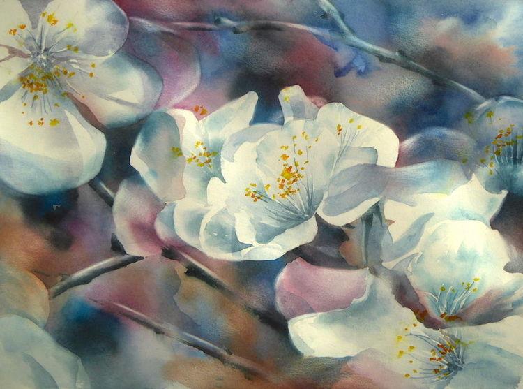 Frühling, Blüte, Weiß, Aquarellmalerei, Kirsche, Baum