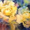 Rose, Gelb, Aquarellmalerei, Aquarell