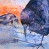 Rabe, Hackordnung, Krähe, Aquarellmalerei