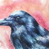 Vogel, Aquarellmalerei, Rabe, Aquarell