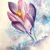 Blumen, Krokus, Violet, Aquarellmalerei