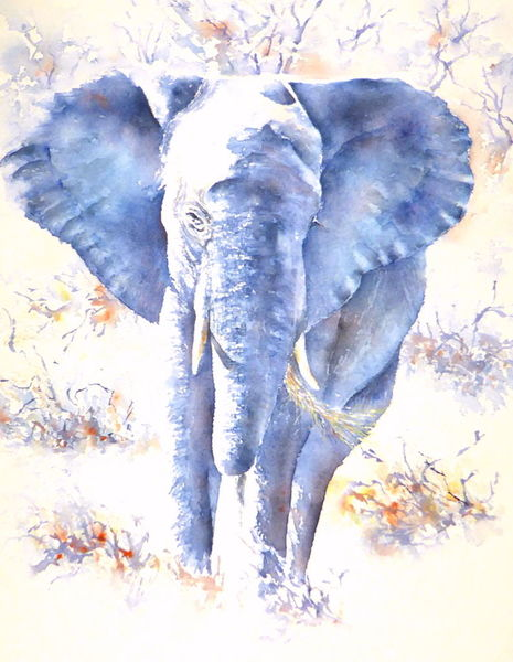 Elefant, Afrika, Tiere, Aquarellmalerei, Souverän, Sovereign