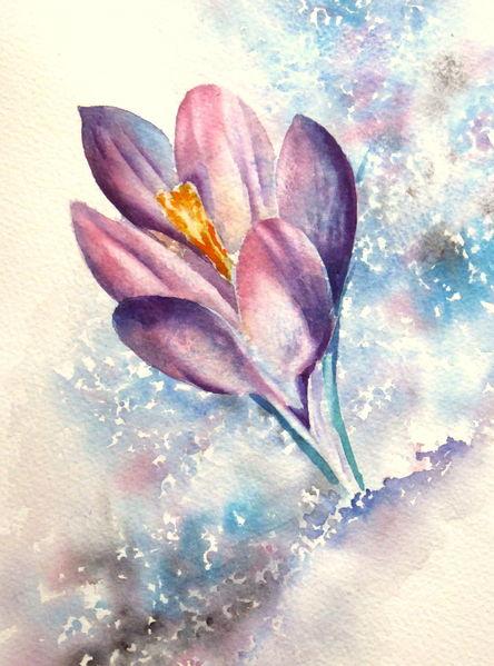 Frühling, Aquarellmalerei, Krokus, Blumen, Violet, Aquarell