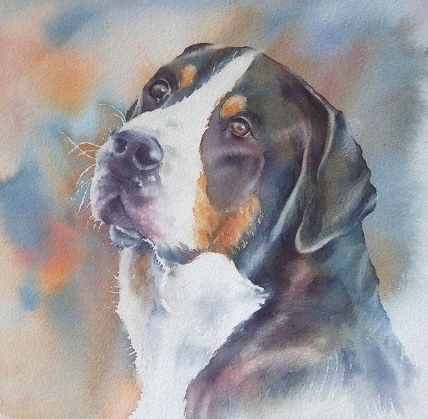 Tiere, Hundeportrait, Hund, Aquarellmalerei, Hundaugen, Aquarell