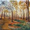 Herbst, Herbstlaub, Landschaft, Baum