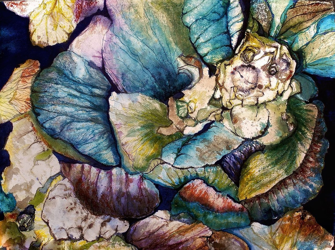 Bild: Kohl, Kohlfeld, Weißkohl, Gemüse von ClaudiaDelissen bei KunstNet