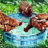 Geflügel, Trinkende hühner, Hühner wassertränke, Huhn
