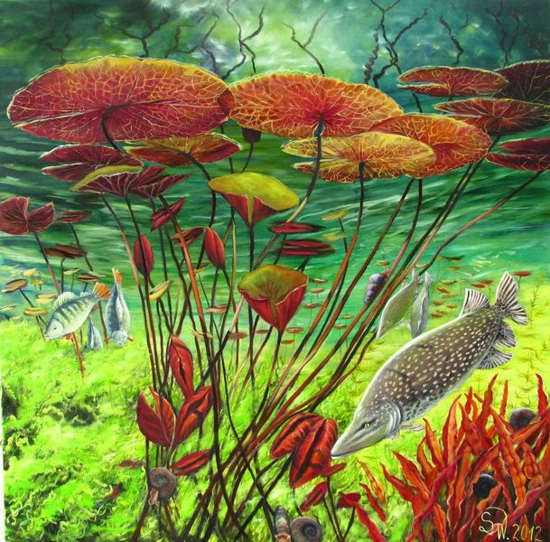 Unterwasser, Hecht, Blätter, Barsch, Schnecke, Bunt