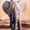 Elefant, Savanne, Afrika, Malerei