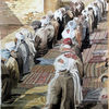 Araber, Menschen, Moselm, Orient