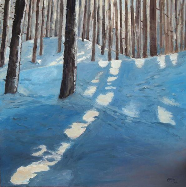 Malerei, Wald, Natur, Sonnenlicht, Lichtmalerei, Schnee