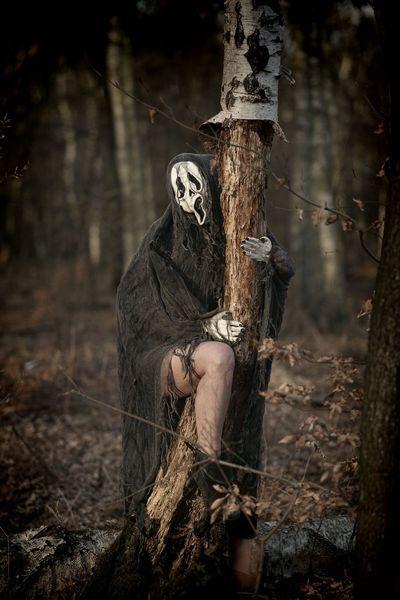 Rheinland, Strom, Baum, Maske, Tageslichtfotografie, Tod