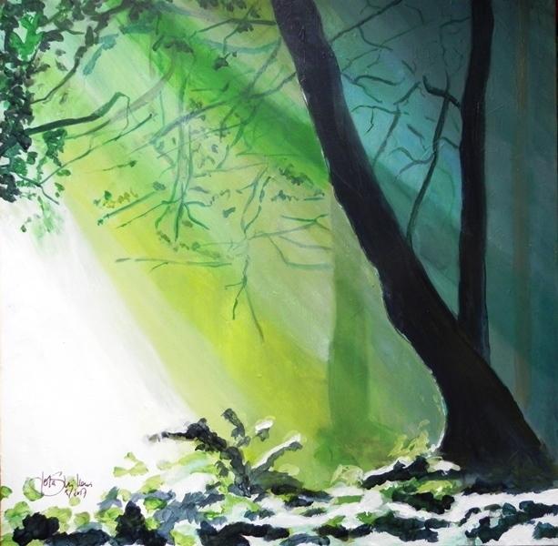 Meditation, Baum, Lichtung, Ruhe, Grün, Sonnenstrahlen