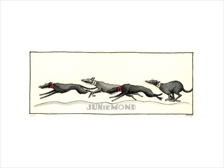 Coursing, Windhunde, Deerhounds, Illustrationen, Tiere