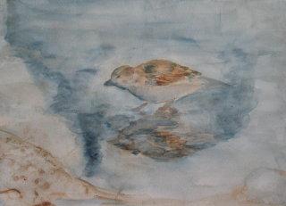 Aquarell, Spiegelung