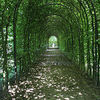 Torbogen, Park, Schlosspark, Fotografie
