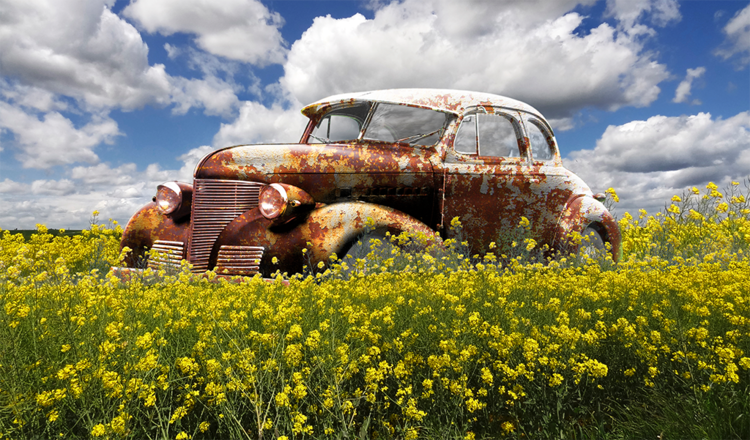 Auto, Wiese, Landschaft, Wandbild, Rost, Fotografie