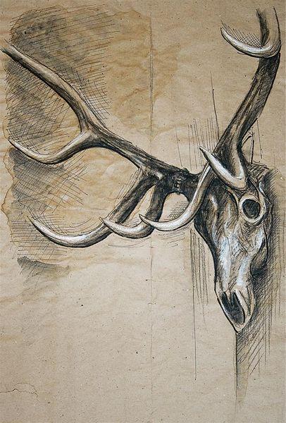 Tiere, Illustrationen, Architektur mensch