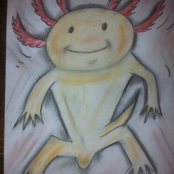 Kreidezeichnung, Kohlezeichnung, Karikatur, Lustig, Zeichnung, Axolotl