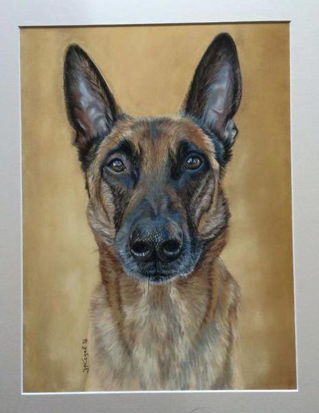 Portrait, Tiere, Naturalistisch, Kreide, Haustier, Pastellmalerei