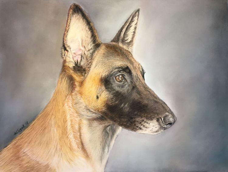 Katze, Pastellmalerei, Haustier, Hund, Fotorealismus, Tiere