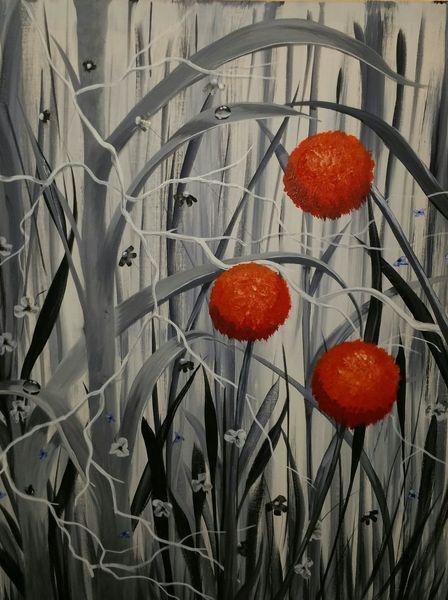 Blumen, Tautropfen, Rot schwarz, Natur, Weiß, Malerei