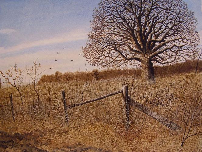 Natur, Landschaft, Herbst, Licht, Aquarellmalerei, Winter