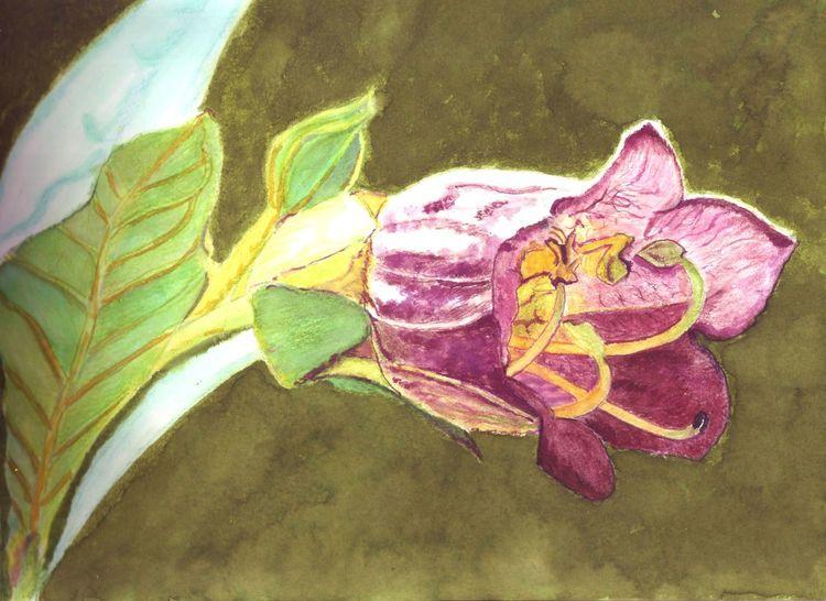 Inktober, Giftig, Büte, Pflanzen, Zeichnungen