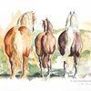 Pferdehintern, Hinteransicht, Pferdeaquarell, Kaltblüter