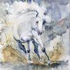 Schönheit, Pferdeportrait, Bewegung, Kraftvoll