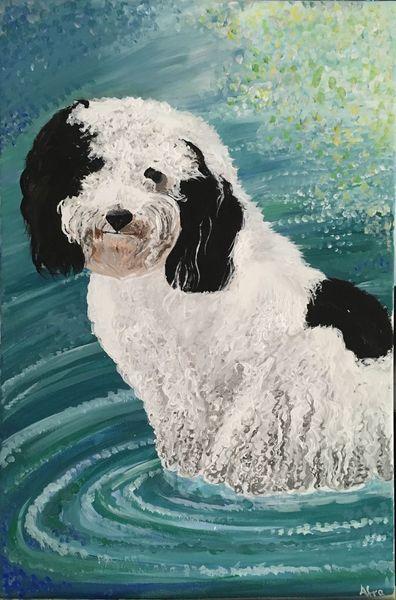 Acrylmalerei, Hund, Wasser, Bolonka, See, Zwetna