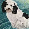 Acrylmalerei, Hund, Wasser, Bolonka