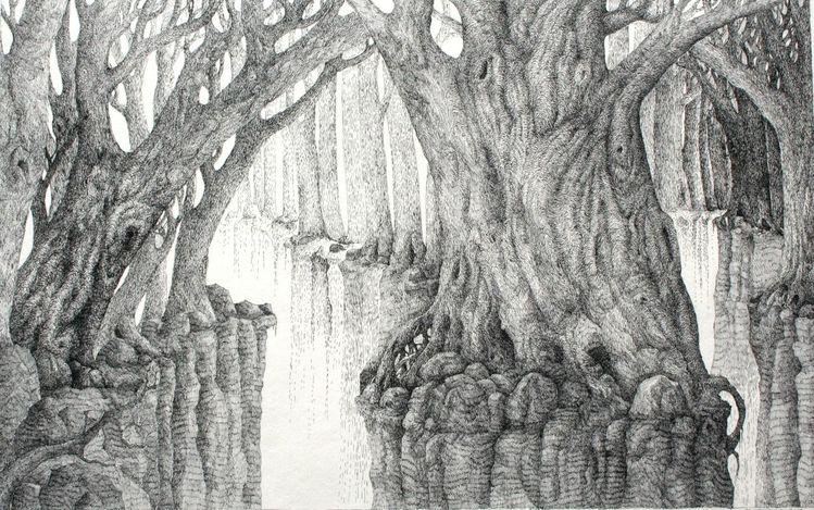 Licht, Baum, Wald, Wurzel, Zeichnungen,