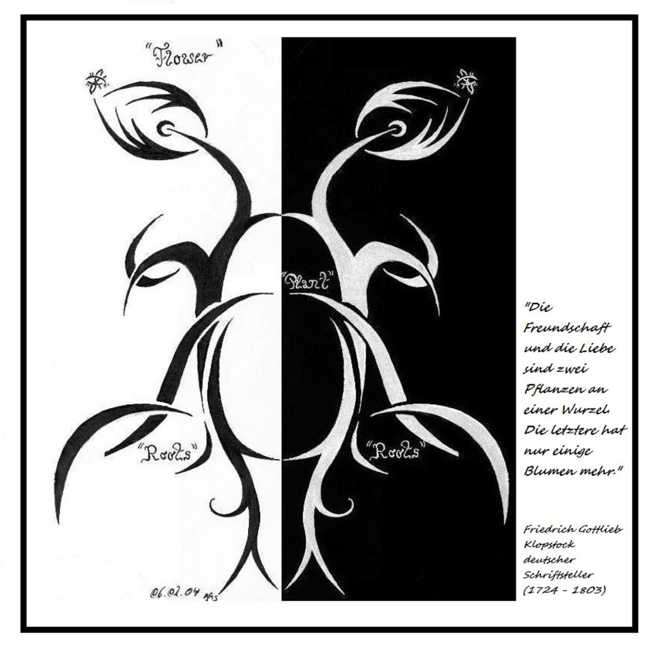 Flower Plant Roots Blume Pflanze Wurzeln Mit Zitat Blumen