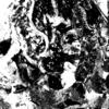 Mensch, Gesicht, Frau, Digitale kunst