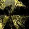 Menschen, Spiegelung, Straße, Zweig