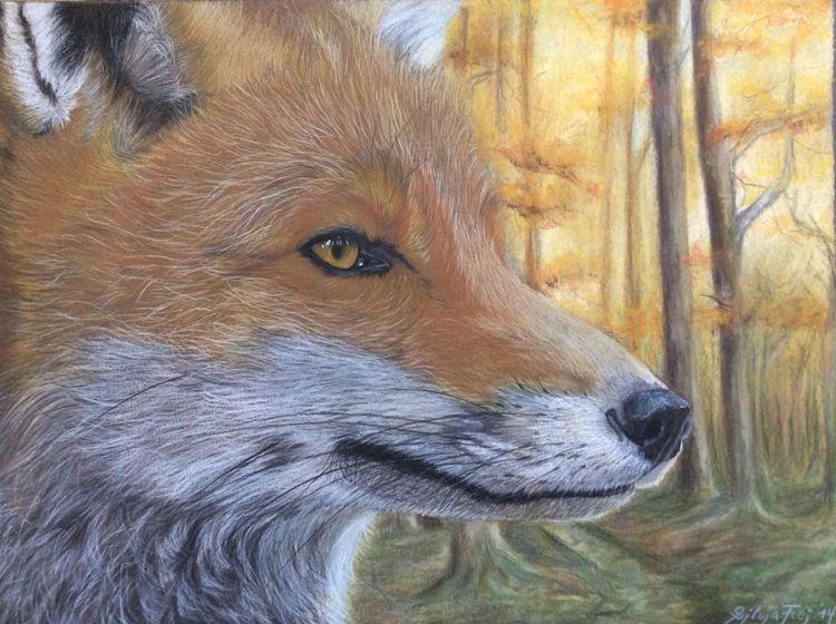 Buntstiftzeichnung, Zeichnung, Wildtier, Portrait, Pastellmalerei, Fuchs