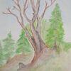 Zeichnung, Landschaft, Baum, Koloriert