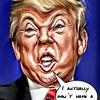 Trump, Gimp, Donald trump, Fotobearbeitung