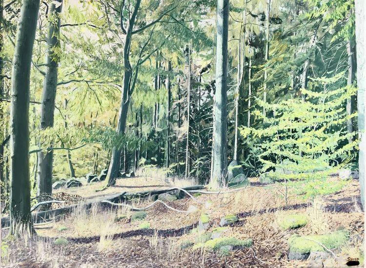 Baum, Tag, Herbst, Blätter, Tiere, Licht