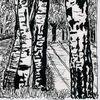 Landschaft, Zeichnung, Birkenallee, Zeichnungen