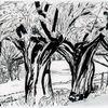 Landschaft, Zeichnung, Weiden, Zeichnungen