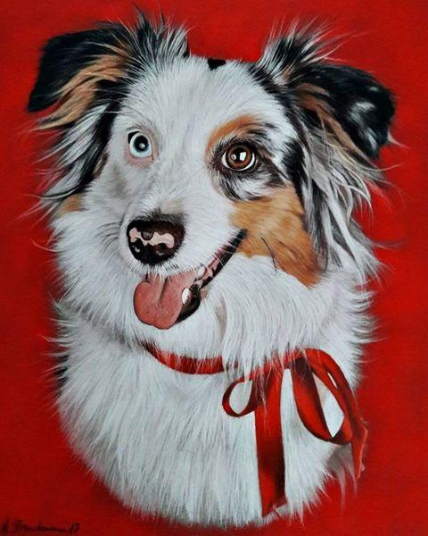 Hund, Pastellmalerei, Aussie, Realismus, Miniaussie, Tiere