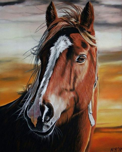 Pastellmalerei, Realismus, Tiere, Himmel, Pferde, Pferdeportrait