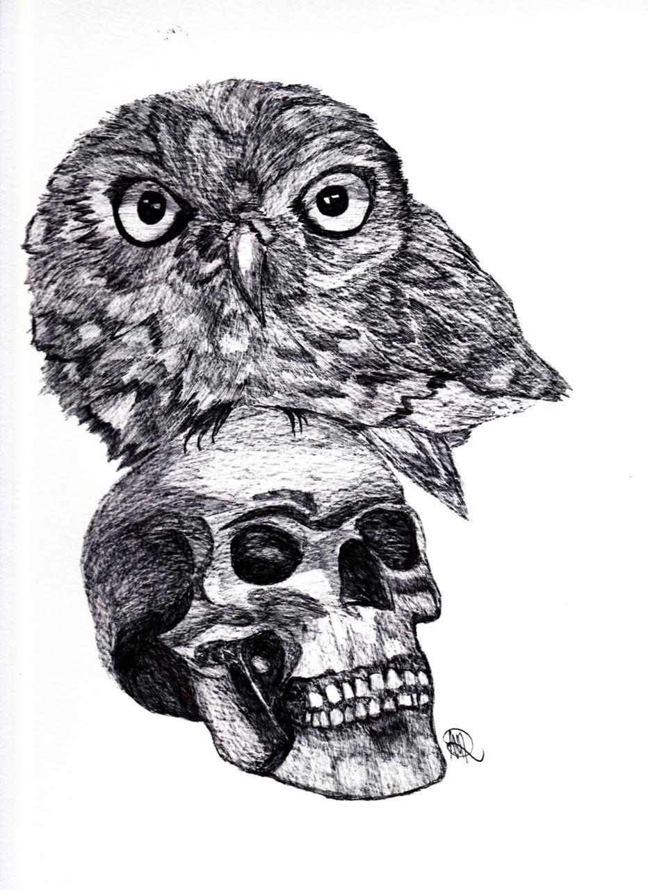 Schädel Zeichnung - 315 Bilder und Ideen - gezeichnet - auf KunstNet